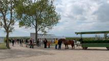 http://drescher-touristik.at/wordpress/wp-content/uploads/2014/10/Pusztasteg-Illmitz-Kutsche-213x120.jpg