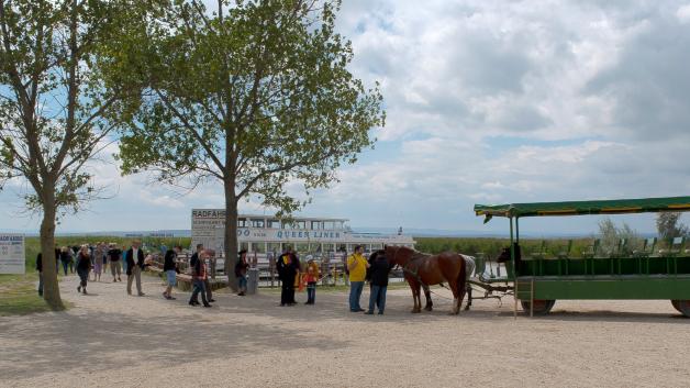 http://drescher-touristik.at/wordpress/wp-content/uploads/2014/10/Pusztasteg-Illmitz-Kutsche-628x353.jpg